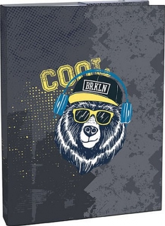 Box na sešity A4 Stil Cool bear